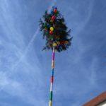 Fasnet 2020, Rathaussturm, Narrenbaum