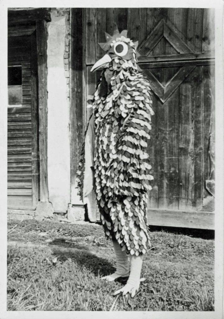 Seegockel